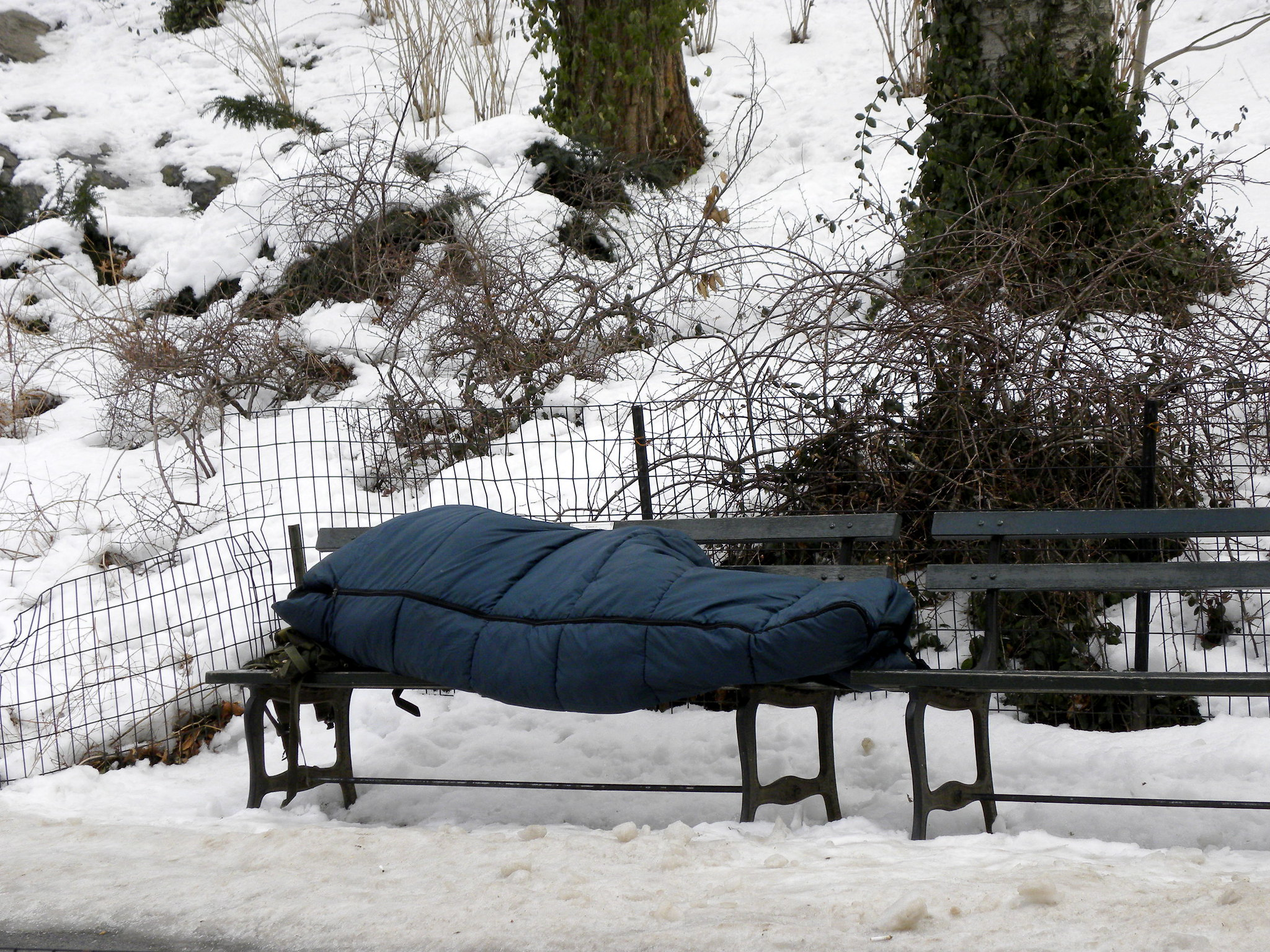 Boulder lowers thresholds for daytime winter sheltering
